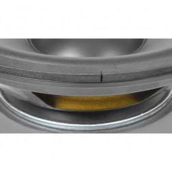 """Ανταλλακτικό μεγάφωνο SkyTec Hi Fi Woofer, PP cone - 25cm (10""""), 125Wrms"""